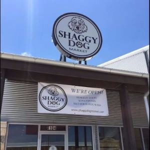 Front of Shaggy Dog